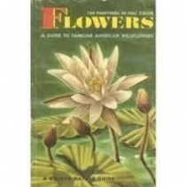 Flowers: a Guide to Familiar American Wildflowers